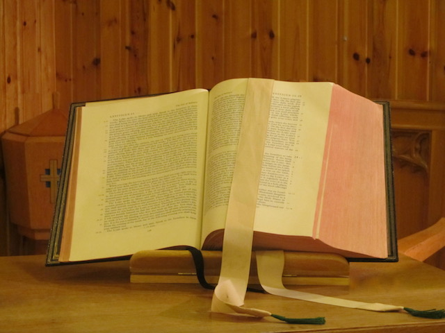 A word in time - Bible Study